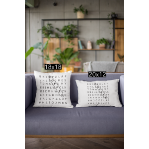 mockup-of-two-pillows-on-a-couch-23542.png