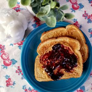 raspberry-and-jam-toast-with-bird.jpg